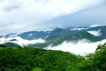 ارسال پرونده «جنگل های ارسباران» به یونسکو برای ثبت جهانی