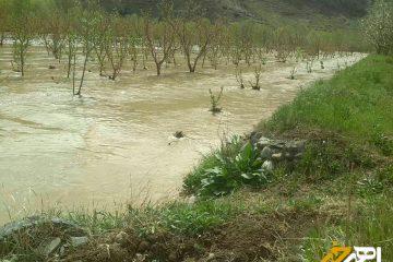 خسارت ۶۰ میلیارد ریالی سیل به باغ ها و اراضی اهر