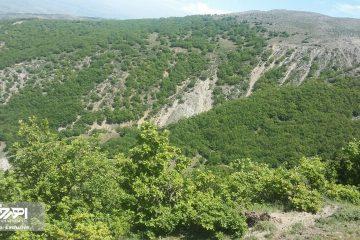 تصاویر زیبا از طبیعت روستای آللو