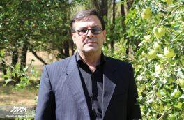 خسارت ۶۴ میلیاردی تگرگ به باغات شهرستان اهر + تصاویر