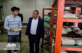 پرداخت یارانه توسط دولت برای حمایت از مصرف کنندگان گوشت مرغ