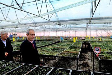 حمایت دولت از صنعتی شدن کشاورزی و توسعه کشت گلخانه ای