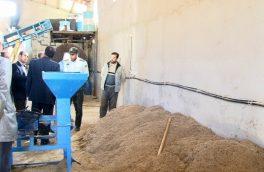 کشف ۲۰۰ تن پودر گوشت غیرمجاز در هریس