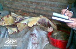 کشف کشتارگاه غیرمجاز در یکی از محلات شهر اهر