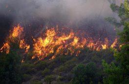 وقوع ۶۰ مورد آتش سوزی در جنگل ها و مراتع آذربایجان شرقی
