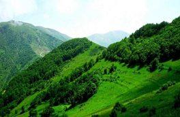 جنگل های ارسباران ثبت جهانی نشد