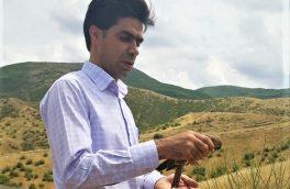 رها سازی سه بهله دلیجه در طبیعت شهرستان خداآفرین