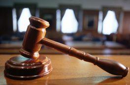 محکومیت دو حیوان آزار به خدمات محیط زیستی در هوراند