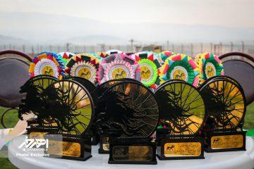 آذربایجان شرقی قهرمان دومین دوره جشنواره سوارکاری جانبازان و معلولین کشوری در اهر شد