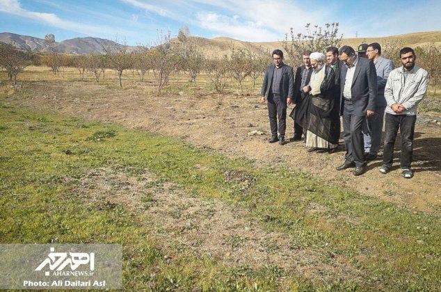 بازدید امام جمعه و فرماندار شهرستان اهر از مزرعه کشت زعفران در روستای دایلار