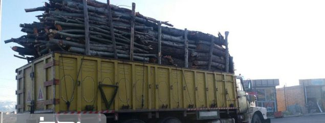 لزوم ممنوعیت صدور مجوز قطع و حمل درختان باغی در شهرستان های اهر، کلیبر، ورزقان و جلفا