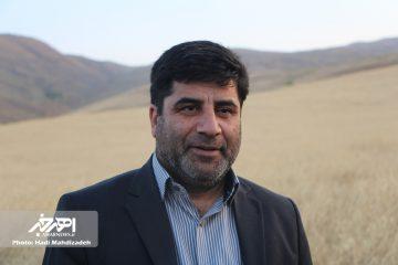 توزیع بدون محدودیت جو به نرخ دولتی ۱۵۰۰ تومان در آذربایجان شرقی