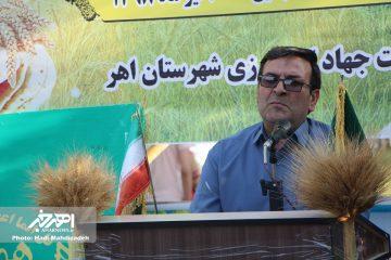 کاهش برداشت گندم به دلیل افزایش دمای هوا و کاهش بارندگی در شهرستان اهر / توزیع ۷۴۰ تن بذر اصلاح شده گندم در بین کشاورزان اهری