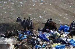 اخطار اداره کل حفاظت محیط زیست آذربایجان شرقی به شهردار اهر