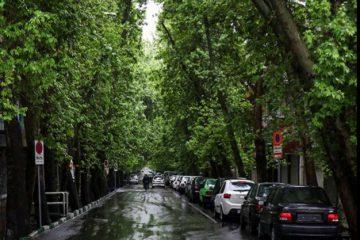 ۳۱۷ میلیمتر بارندگی آخرین میزان بارش سال آبی ۹۹ – ۱۳۹۸