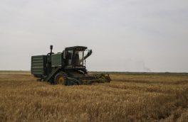 تولید ۸۰۰ هزار تن گندم در آذربایجانشرقی
