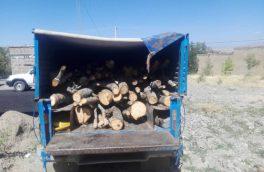 دستگیری متخلفان قطع ۵۰ اصله درخت جنگلی در ورزقان