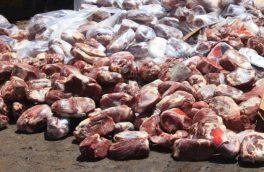 ۱۵۳ تن مواد خام دامی در آذربایجانشرقی کشف و امحا شد