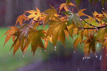 سامانه بارشی از روز پنجشنبه وارد آذربایجان شرقی می شود