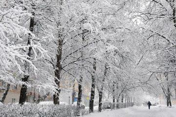 بارش برف همراه با کاهش نسبی دما در آذربایجان شرقی