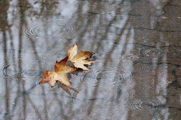 کاهش ۲۵ درصدی بارش ها در کشور/ تداوم کم بارشی تا اواخر بهمن ماه
