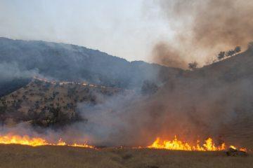 مدیریت اطفای حریق جنگل های آذربایجان شرقی تقسیم بندی شده است