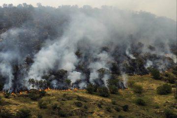 هشدار به احتمال آتش سوزی در مراتع و جنگلهای آذربایجان شرقی