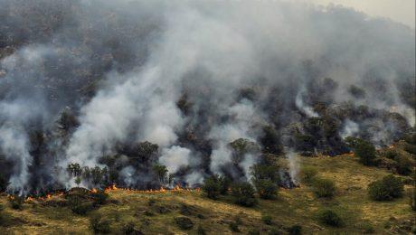 نقاط بحرانی جنگل های ارسباران در مخاطرات حریق شناسایی شد
