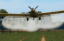 آفات جنگل های ارسبارانی در حالت طغیانی/ عملیات محلول پاشی بیولوژیک جنگل های ارسباران به وسیله هواپیما