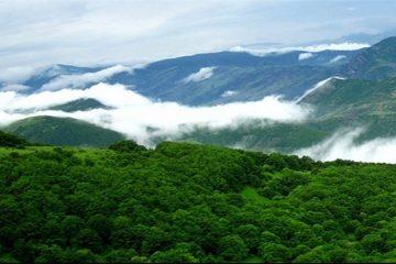 هشدار درباره خشک شدن جنگل های ارسباران
