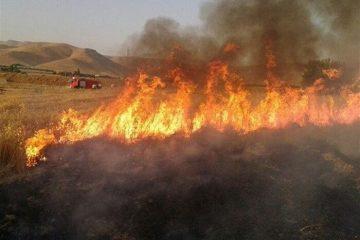 آتش سوزی در منطقه پیرداود شهرستان ورزقان مهار شد