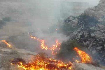 ۱۰ هکتار از پوشش گیاهی بکر آذربایجان شرقی طعمه حریق شد