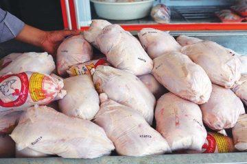 طرح مدیریت هوشمند توزیع گوشت مرغ در آذربایجان شرقی اجرا میشود