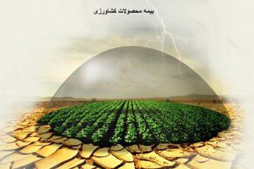 ۶۴۳ میلیارد ریال به کشاورزان خسارت دیده آذربایجان شرقی پرداخت شد