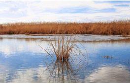 آخرین وضعیت تالاب های آذربایجان شرقی در فصل خشکسالی