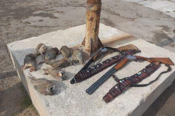 دستگیری شکارچیان غیر مجاز در شهرستان اهر