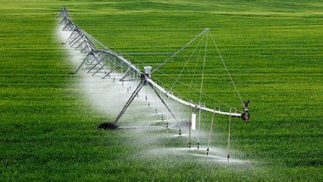تامین آب کشاورزی شهرستان اهر از ۷ سد بزرگ و کوچک/ تجهیز ۶ هزار و ۵۰۰ هکتار از اراضی کشاورزی شهرستان اهر به سیستم های آبیاری نوین